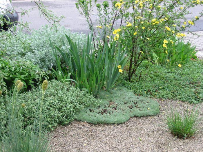 Streng Aber Lassig Neuanlage Ein Garten Fast Ohne Rasenflache